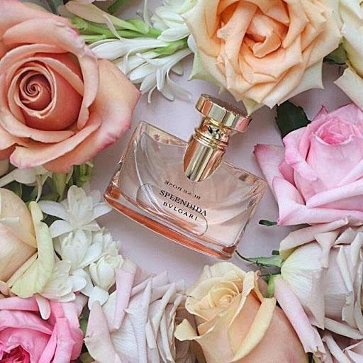 Nước Hoa Bvlgari Splendida Rose Rose